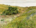 Landschaft Shinnecock Hills William Merritt Chase