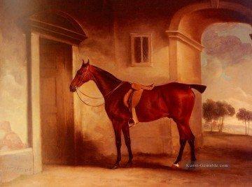 Pferd Galerie - A Saddled Bay Hunter in einem Stableyard Pferd John Ferneley Snr