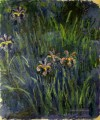 Iris II Claude Monet