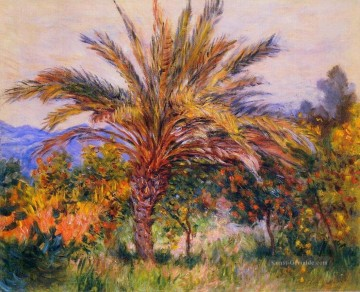 Claude Monet Gemälde - A Palm Tree at Bordighera Claude Monet