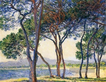 Claude Monet Gemälde - Trees by the Seashore at Antibes Claude Monet