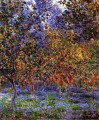 Unter dem Lemon Trees Claude Monet