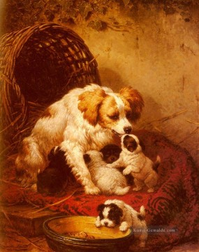 The Happy Family Tier Katze Henriette Ronner Knip