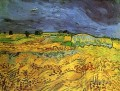 The Fields Vincent van Gogh