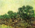 Olive Picking 2 Vincent van Gogh