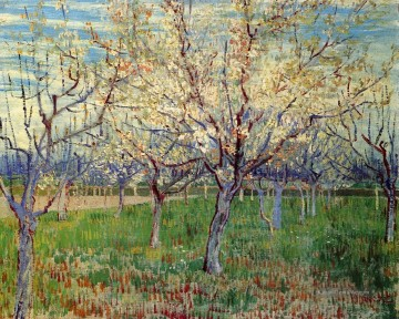 Vincent Van Gogh Werke - Orchard with Blossoming Apricot Trees Vincent van Gogh
