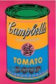Campbell Soup Can Tomato POP Künstler