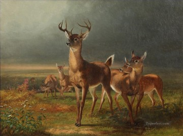 Deer On The Prairie William Holbrook Beard Ölgemälde