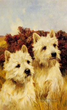 jean - Jacque und Jean Champion Westhighland White Terrier Tier Arthur Wardle dog