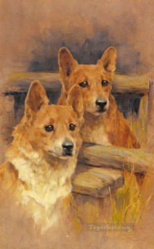 Hund Werke - Zwei Corgies Tier Arthur Wardle dog