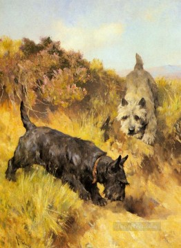 Hund Werke - zwei Scotties in einer Landschaft Tier Arthur Wardle dog