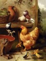 A Chicken Doves Pigeons And Ducklings farm Tiere Edgar Hunt