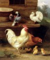 A Cockerel Hen And Chicks With Pigeons farm Tiere Edgar Hunt