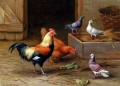 Chickens Pigeons And A Dove farm Tiere Edgar Hunt