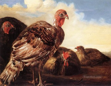 Domestic Fowl countryside painter Aelbert Cuyp Ölgemälde