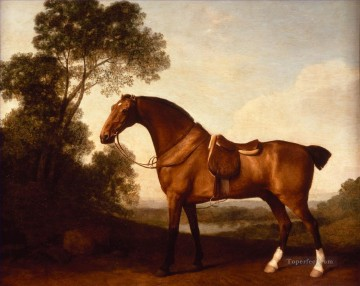 Ein Saddled Bay Hunter von George Stubbs Neddy Ölgemälde