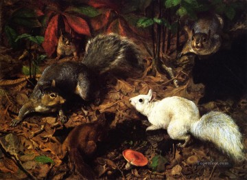 Tiere von unterschiedlichen Sorten Werke - Squirrels known as The White Squirrel William Holbrook Beard Tier