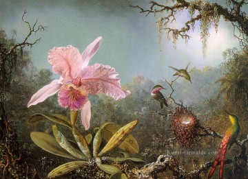 Klassik Blumen Werke - Cattelya Orchid and Three Brazilian Hummingbirds Martin Johnson Heade Klassische Blumen