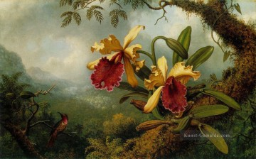 Klassik Blumen Werke - Orchids and Hummingbird ATC Blumenmaler Martin Johnson Heade