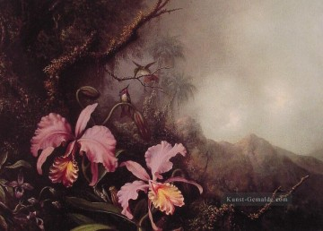 Klassik Blumen Werke - Two Orchids in a Berglandschaft Blumenmaler Martin Johnson Heade