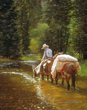 Indianer und Cowboy Werke - cowboy and pferd in stream