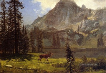 Berg Werke - Call of the Wild Albert Bierstadt Berg