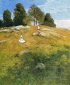 Sommernachmittag Shinnecock Landschaft Julian Alden Weir