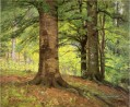Beech Trees Impressionist Indiana Landschaften Theodore Clement Steele Wald