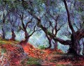 Olivenhain in Bordighera Claude Monet Wald