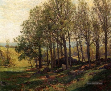 Gehölz Gemälde - Maples in Spring Szenerie Hugh Bolton Jones Wald