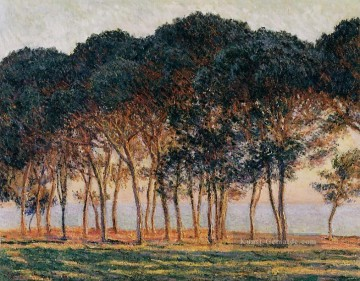 Gehölz Gemälde - Under the Pine Trees at the End of the Day Claude Monet Wald