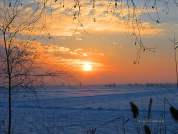 Originale von Toperfect Werke - Sunset in south of China in winter realistic original