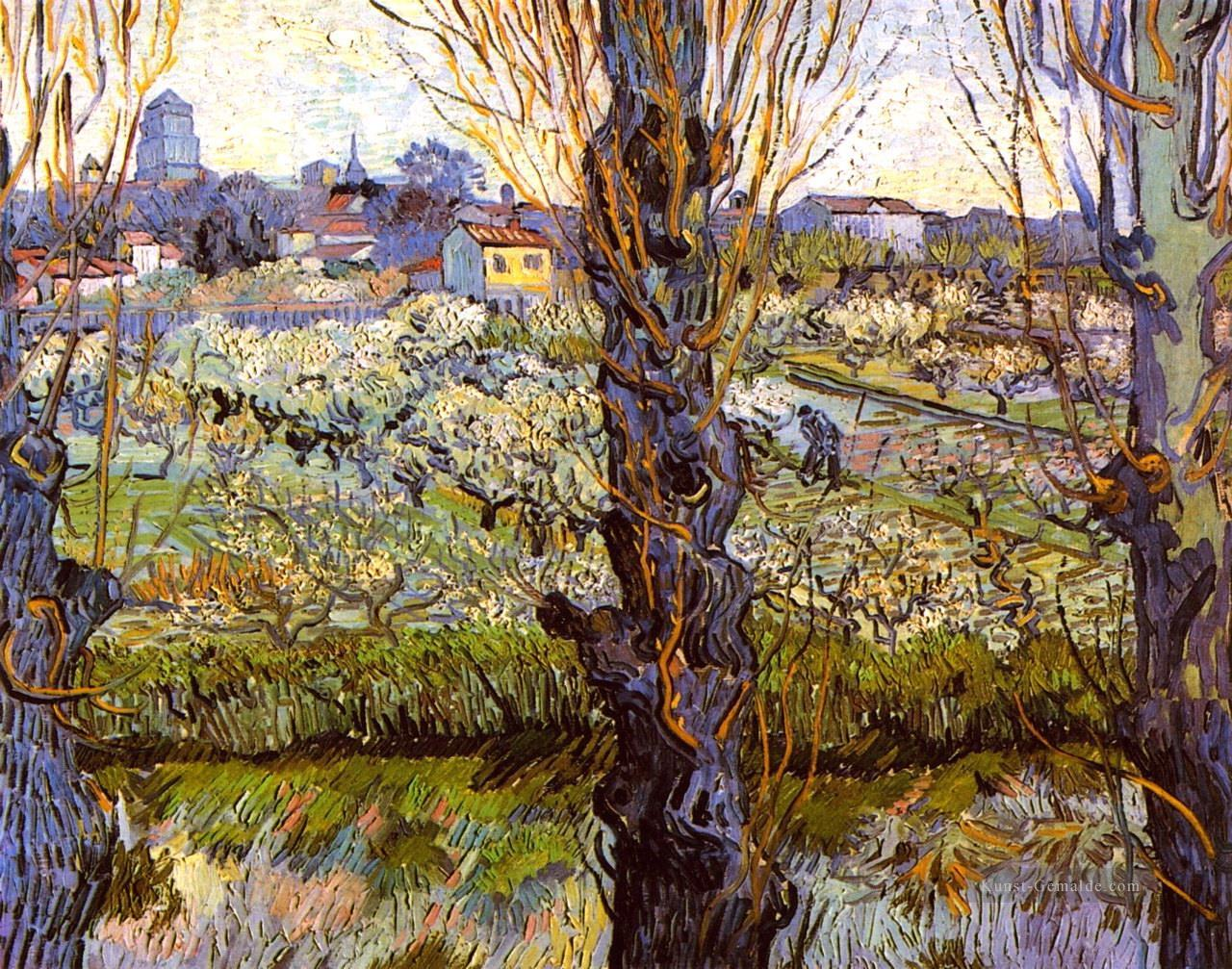 Orchard in Bloom mit Pappeln Vincent van Gogh Ölgemälde